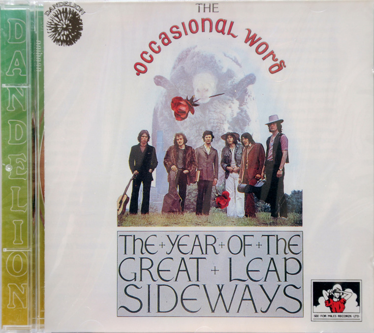 The Year of the Great Leap Sideways album cover